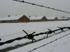 Birkenau Concentration Camp, Poland